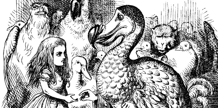 alice-and-the-dodo.jpg